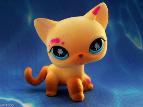 Littlest Pet Shop Cat Painting Cat 815