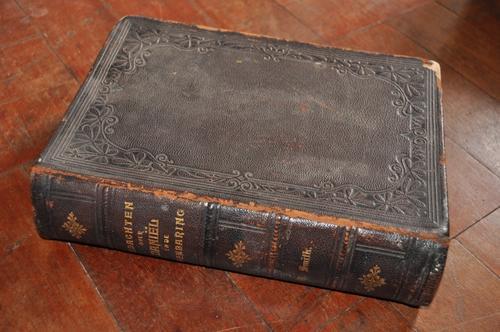 GEDACHTEN OVER DANIEL EN DE OPENBARING BY URIAH SMITH,FIRST EDITION 1889