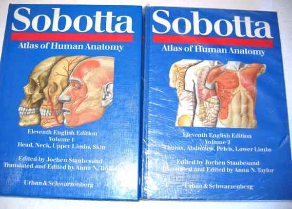sobotta atlas of human anatomy – Periodic & Diagrams Science