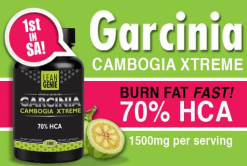 Fit tea fat burner reviews