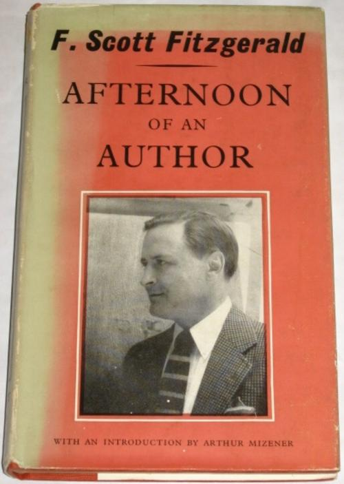 critical essays on f scott fitzgerald Final critical essay - free download as word doc (doc / docx), pdf file (pdf), text file (txt) or read online for free.
