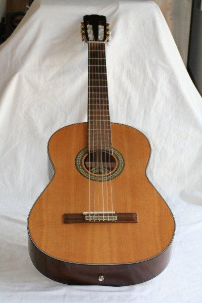 Acoustic An Awesome Santana Cg 30 Nylon Strung Acoustic
