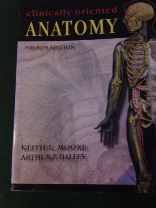 Medicine - Clinically Oriented Anatomy 4th edition - Moore, Dalley ...