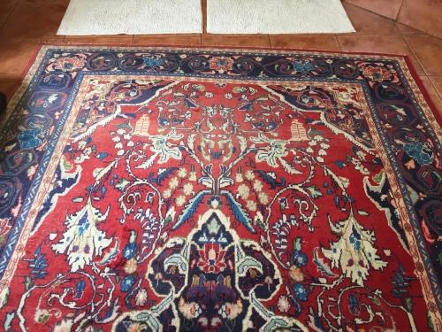 Carpets In KwaZulu Natal Value Forest