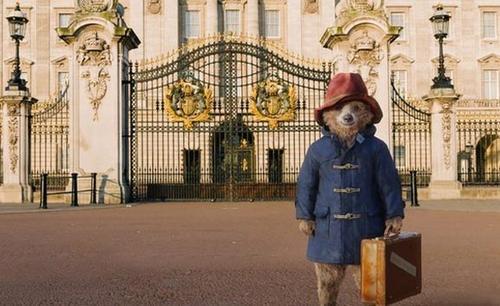 paddington bear film