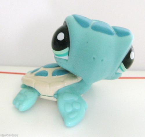 Character Toys Littlest Pet Shop Turtle Sea Turtle 2097 Was Sold For R35 00 On 11 Jul At 12 46 By Sigrids Shop In Johannesburg Id 68427746