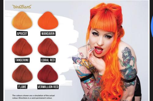 Hair Colourants Dyes Flame La Riche Directions Semi Permanent