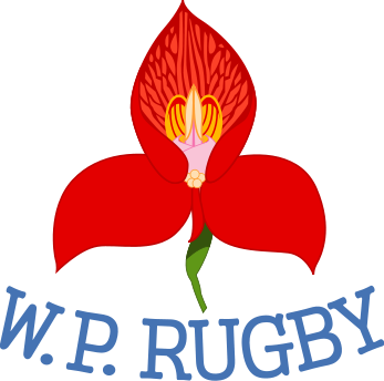 Rugby 1964 Western Province Winners Of The Currie Cup Competition