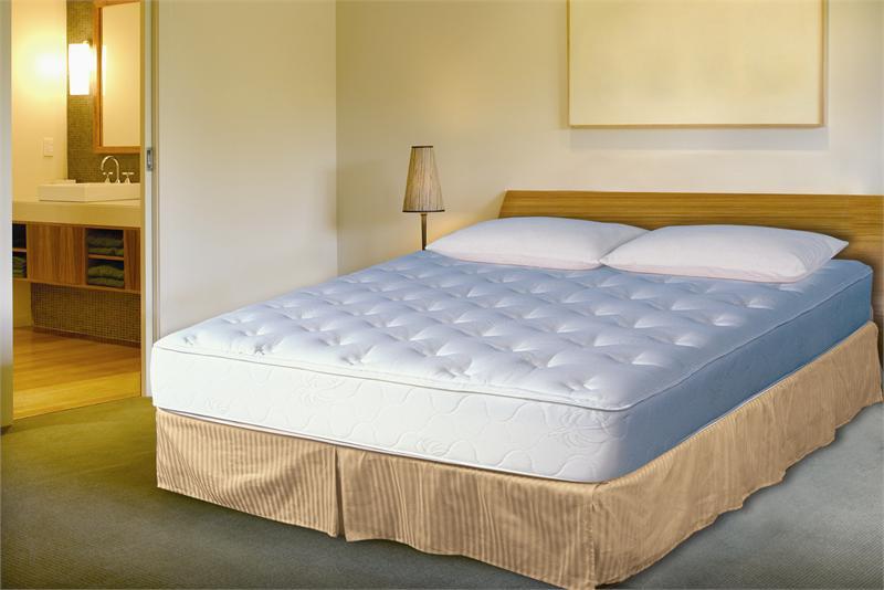Hazlo Visco-Elastic Memory Foam Mattress