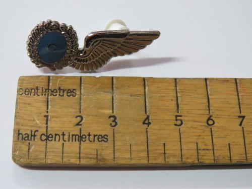 Unieke Antieke - Set of 3 SA Air Force Chef mess dress wings