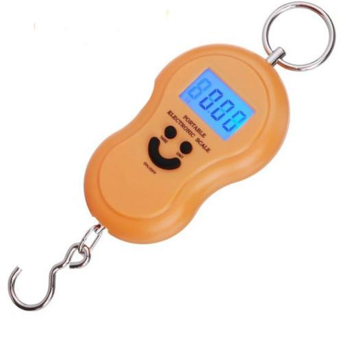 Image result for Portable electronic Scale 50kg