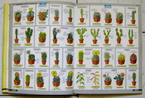 house plant expert hessayon Uncommonly good books found here find new and used books on home & garden biblio has over 100 million new, used and rare books for sale in.