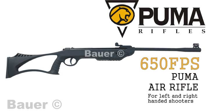 puma junior air rifle