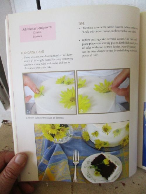 Cake Decorating Za : Cooking, Food & Wine - CAKE DECORATING FOR THE FIRST TIME ...