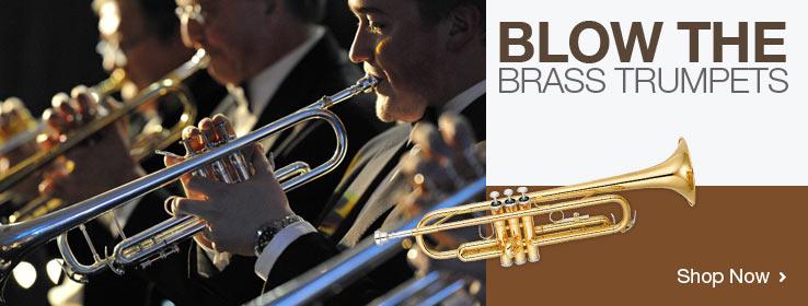 Brass instruments for sale on bidorbuy!
