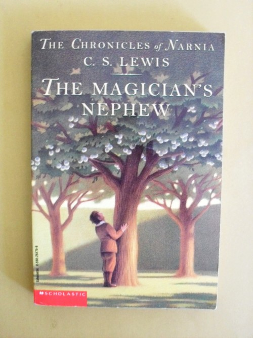literary paper on the magicians nephew 7th grade english mrs simonson this reading guide is to be used before, while and after reading cs lewis' the magicians nephew the questions provided will help you better understand the readings and come to a deeper appreciation of the work.