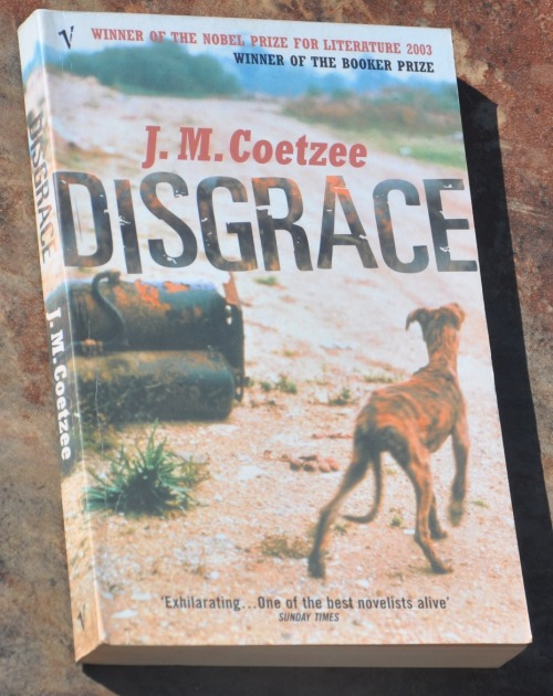disgrace j m coetzee Reconciliation in jm coetzee's disgrace benjamin ogden it happens every  day, every hour, every minute, he tells himself, in every quarter of the country.