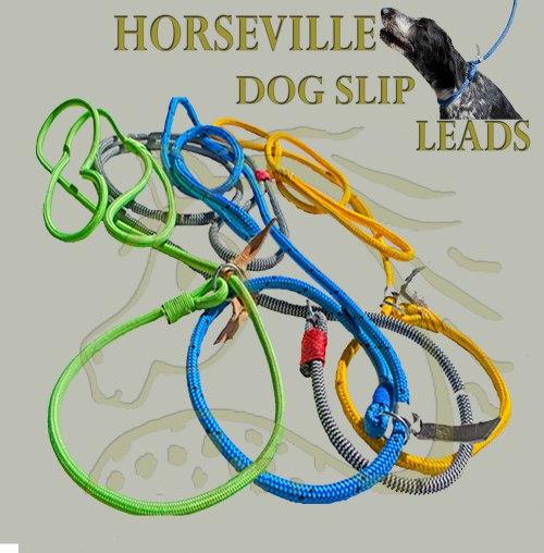 Dog Collar For Sale Durban
