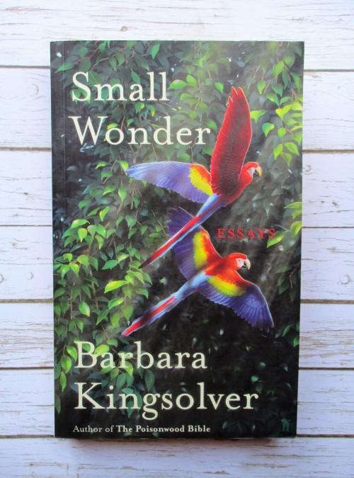 small wonder essay