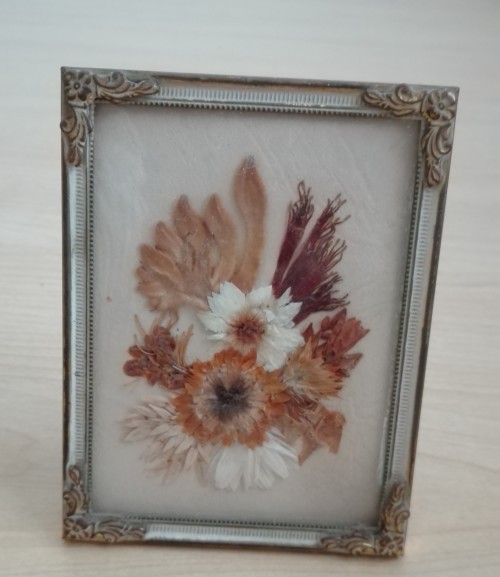 Small Framed Dried Flowers - 10cm x 8cm