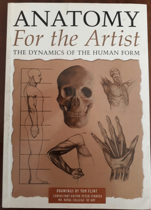 Art Photography Anatomy For The Artist The Dynamics Of The