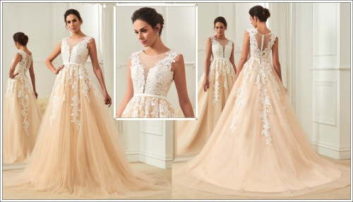 Wedding dresses wild rose beautiful champagne lace applique