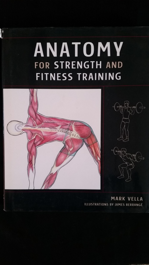 Health, Mind & Body - Anatomy for Strength and Fitness Training for ...