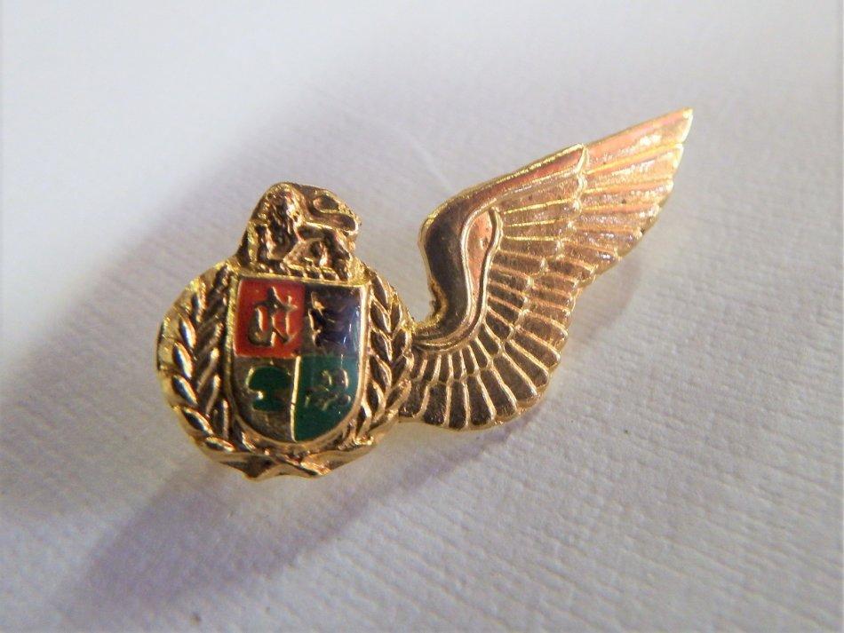 SA Air force navigator mess dress wing