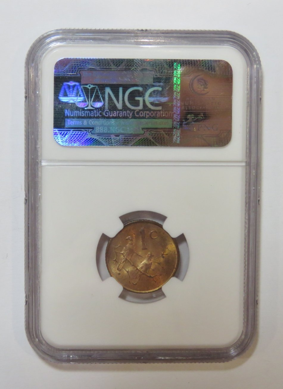1965 English cent graded MS 63 RB by NGC - only 1180 minted !  Have you got one?