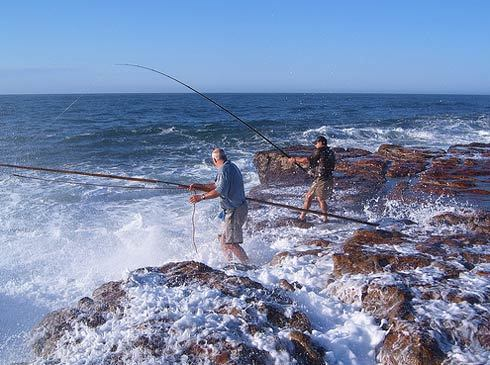 The best fishing spots in south africa for Bay area fishing spots