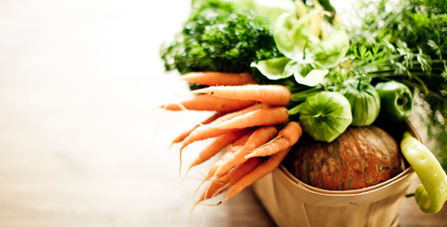 Boost Your Immune System With Plant Based Foods
